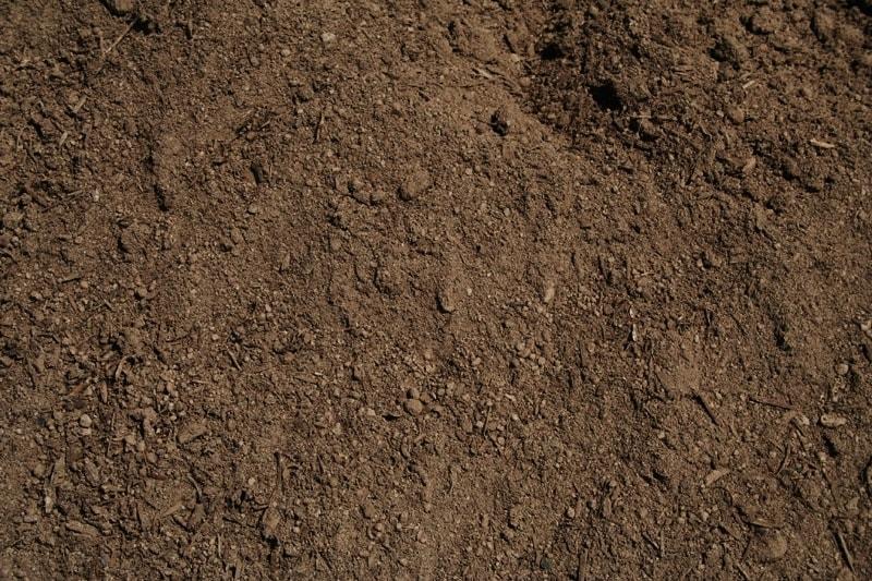 Black Diamond Dirt