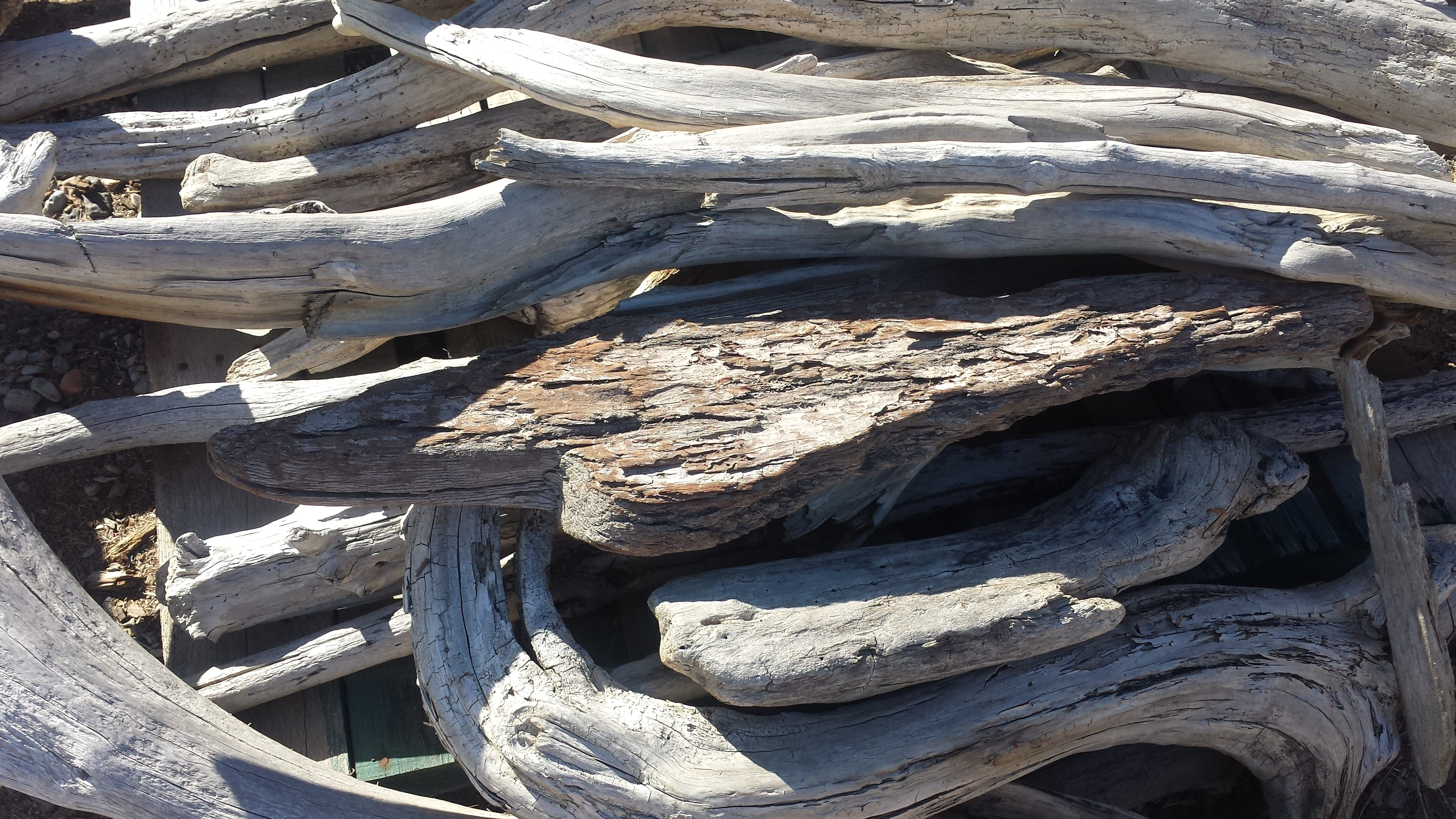 Driftwood Medium